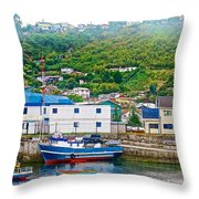 Hillside Along Harbor Near Angelo Fish Market In Puerto Montt-chile  Throw Pillow
