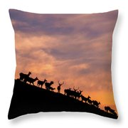 Hillside Elk Throw Pillow