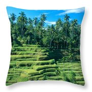 Hillside In Indonesia Throw Pillow