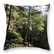 Hillside Landscape Throw Pillow
