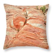 Hillside Of Color In Valley Of Fire Throw Pillow