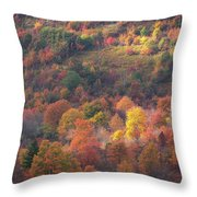 Hillside Rhythm Of Autumn Throw Pillow