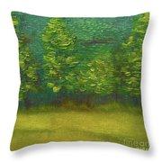 The Lakeside  Throw Pillow