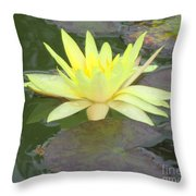 Hilo Water Lily 4 Throw Pillow