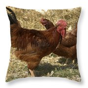 Him And Her Throw Pillow