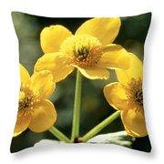 Himalayan Marsh Marigold Throw Pillow