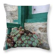 Himalayan Still Life Throw Pillow