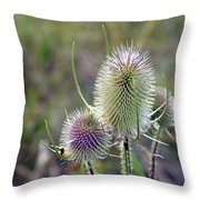 Hint Of Violet Throw Pillow
