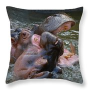 Hip Hip Hooray Throw Pillow