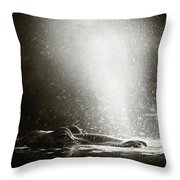 Hippo Blowing  Air Throw Pillow by Johan Swanepoel