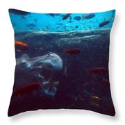 Hippo Eating African Cichlids Throw Pillow