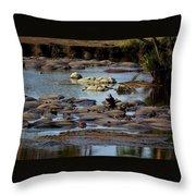 Hippo Raft Throw Pillow
