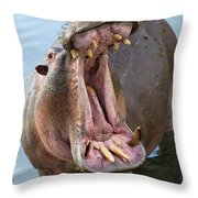 Hippo's Open Mouth Throw Pillow by Yair Karelic