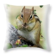 Hippy Chip - Chipmunk - Vertical Throw Pillow