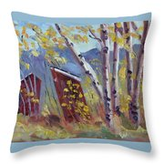 His 'n' Hers At Columbine Colorado Throw Pillow