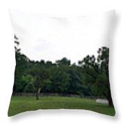 Historic Appomattox Panorama  Throw Pillow