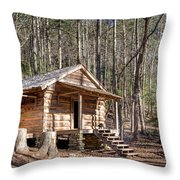 Historic Cabin Throw Pillow