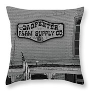 Historic Carpenter Farm Supply Sign Throw Pillow
