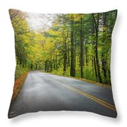 Historic Columbia River Highway In Fall Throw Pillow