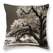 Historic Drayton Hall In Charleston South Carolina Live Oak Tree Throw Pillow by Dustin K Ryan