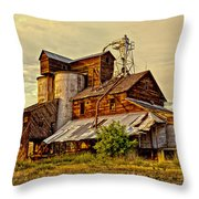 Historic Fairview Mill Throw Pillow
