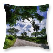 Historic Jungle Trail Vero Bch Fl V Throw Pillow