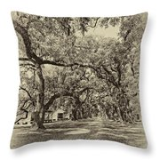 Historic Lane Antique Sepia Throw Pillow