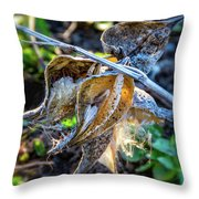 History And Hope Throw Pillow