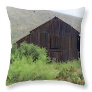 History In A Barn Throw Pillow