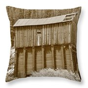 History In Tincup 2 Throw Pillow