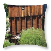 History In Tincup Throw Pillow
