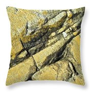 History Of Earth 2 Throw Pillow