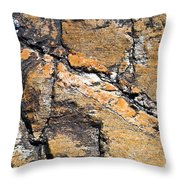 History Of Earth 4 Throw Pillow by Heiko Koehrer-Wagner
