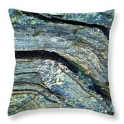 History Of Earth 7 Throw Pillow