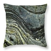 History Of Earth 8 Throw Pillow
