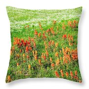 History Of The Paintbrush Throw Pillow