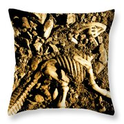 History Unearthed Throw Pillow