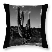 History's Witness Throw Pillow