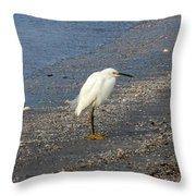 Hitchcock Snowy Egret Throw Pillow