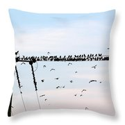 Hitchcock,  The Birds Throw Pillow