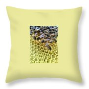 Hive Throw Pillow