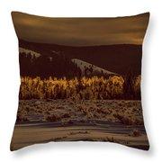 Hoar Frost In Dawn's Light Throw Pillow