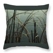 Hoar Frost On Pond 1 Throw Pillow