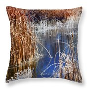 Hoar Frost On Reeds Throw Pillow