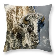 Hoarfrosted Bison In Yellowstone Throw Pillow
