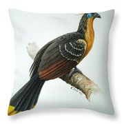 Hoatzin Throw Pillow