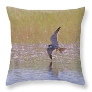 Hobby Skimming Water Throw Pillow