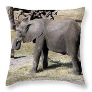 Hobo Throw Pillow
