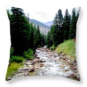 Hobock Canyon Throw Pillow