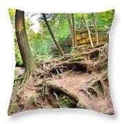 Hocking Hills Ohio Old Man's Gorge Trail Throw Pillow